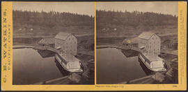 """Imperial Mills, Oregon City."" (Stereograph 1224)"