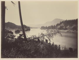 """The Columbia River from near the Head of Bradfords Island."" (Mammoth 444)"