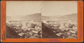 """The Willamette Falls, Oregon."" (Stereograph 1221)"