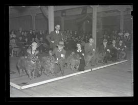 Dog show, probably at Pacific International Livestock Exposition