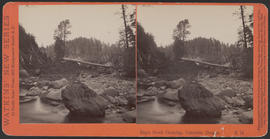 """Eagle Creek Crossing, Cascades, Oregon."" (Stereograph E12)"