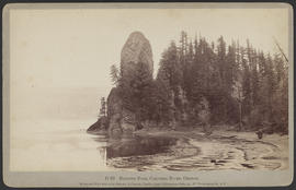 """D89. Rooster Rock, Columbia River, Oregon."""