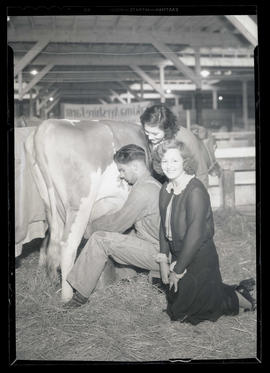Two young women with man milking cow