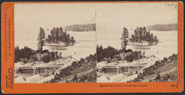 """Islands in the Columbia, from the Upper Cascades."" (Stereograph 1273)"