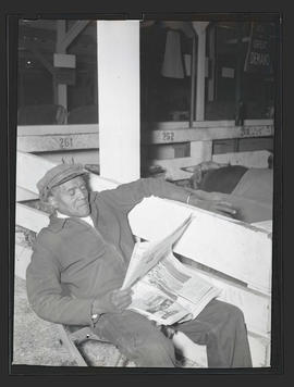 Unidentified man reading newspaper in barn, probably at Pacific International Livestock Exposition