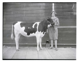 Woman with heifer