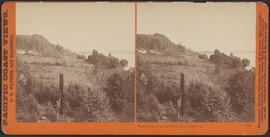 """View on the Columbia River, near Vancouver."" (Stereograph 1225)"