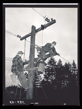 Linemen working on utility pole
