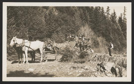 Group in horse-drawn wagon