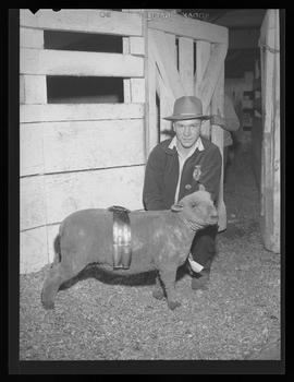 Sheep sale, Pacific International Livestock Exposition