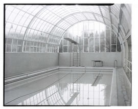 Indoor swimming pool and diving board