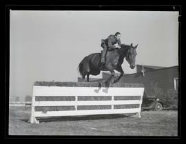 Horse and rider jumping over obstacle