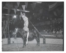 Circus performer doing stunt on horseback