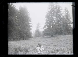 Unidentified woman and two girls in meadow of wildflowers