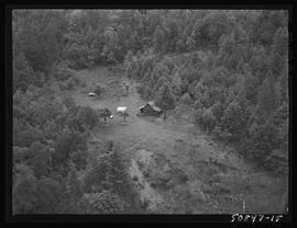 Aerial view of Robert Fox murder scene, Siskiyou mountains