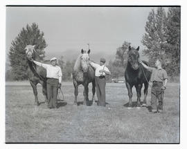 Three unidentified men with draft horses, probably at Pacific International Livestock Exposition