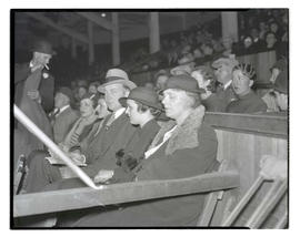 Spectators in stands, possibly at livestock show
