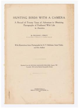 Hunting birds with a camera
