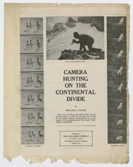 """Camera hunting on the continental divide"""