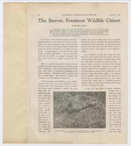 """The beaver, foremost wildlife citizen"""
