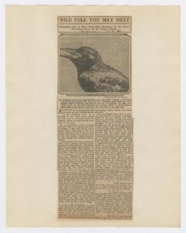 Articles discussing crows and sparrow hawks vultures in Oregon